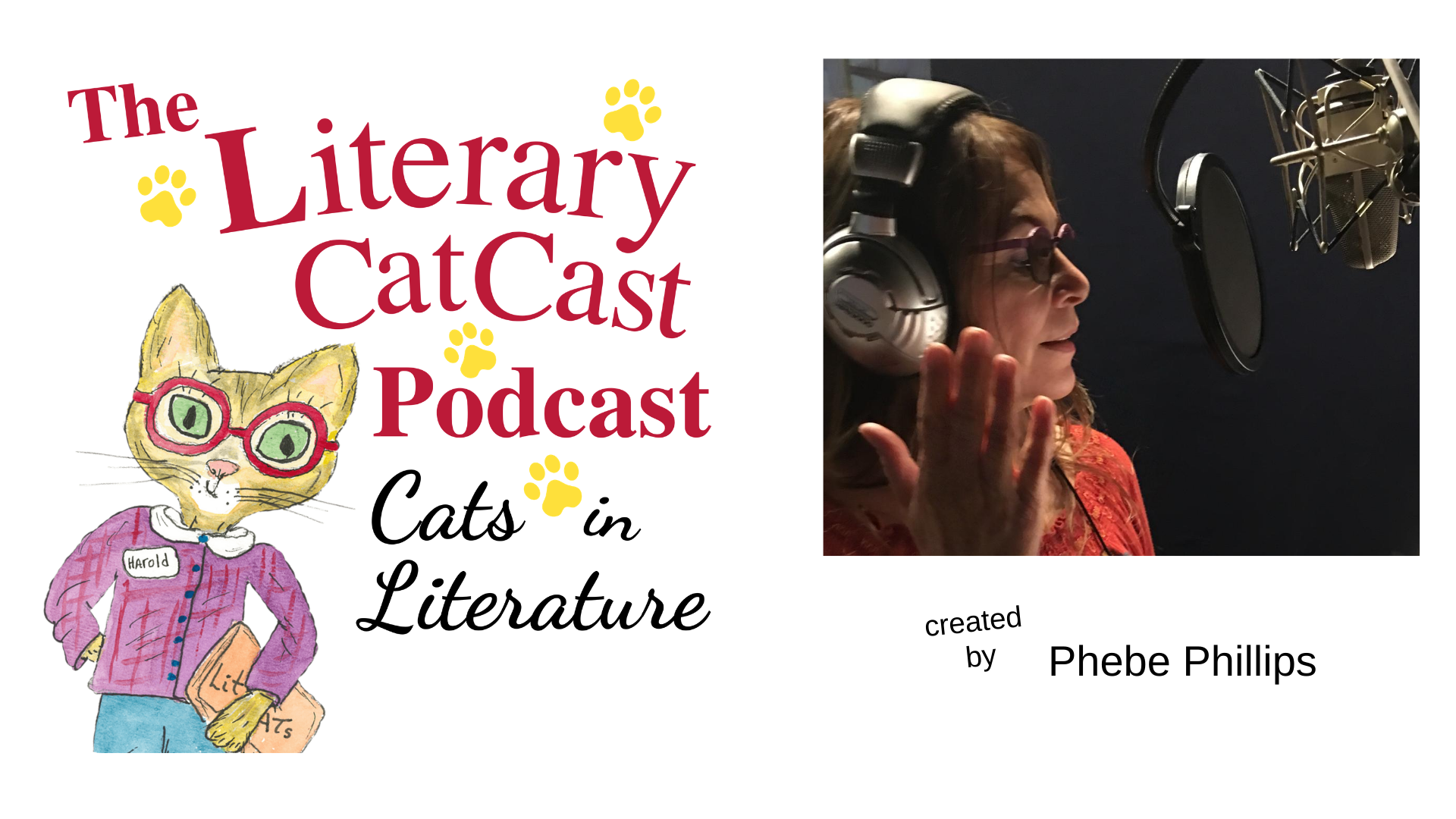 This is a banner for The Literary Catcast Website.